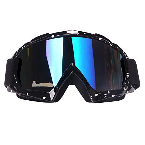Top 9 Goggles for Dirtbike – Powersports Goggles